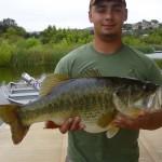 Wohlford bass